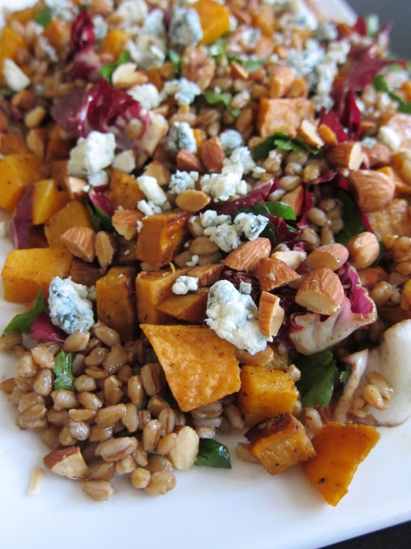 Butternut-Squash-Farro-Radicchio-Blue-Cheese-Salad-Close-Up