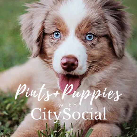 CitySocial (4)